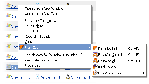 FlashGot Compact Context Menu